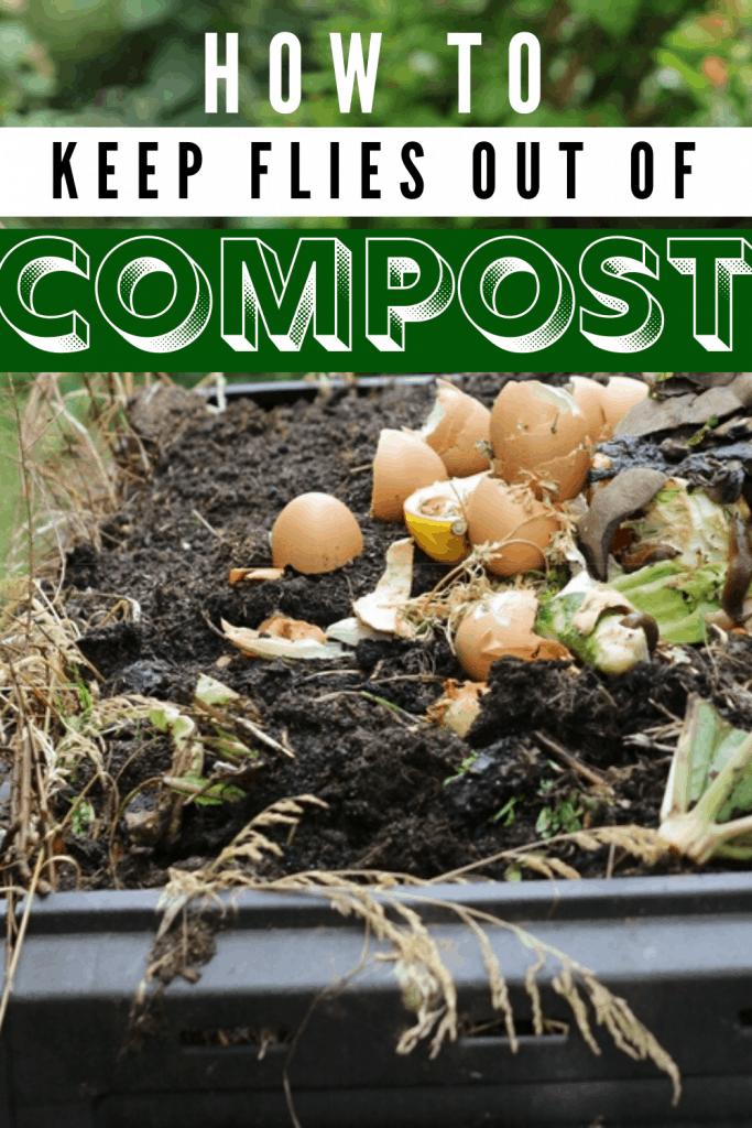 troubleshoot flies in compost